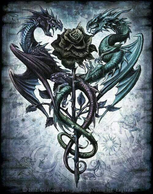 The Dragon who loved roses.