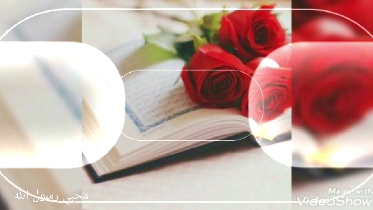 نور على مر الزمان تألق واضاء للدنيا طريق مشرقا يا حافظ القرآن In 2021 Wedding Sneaker Wedding Shoe Fashion