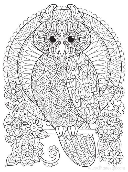 Owl Coloring Page From Thaneeya Mcardle S Groovy Owls Coloring Book Owl Coloring Pages Coloring Books Mandala Coloring Pages