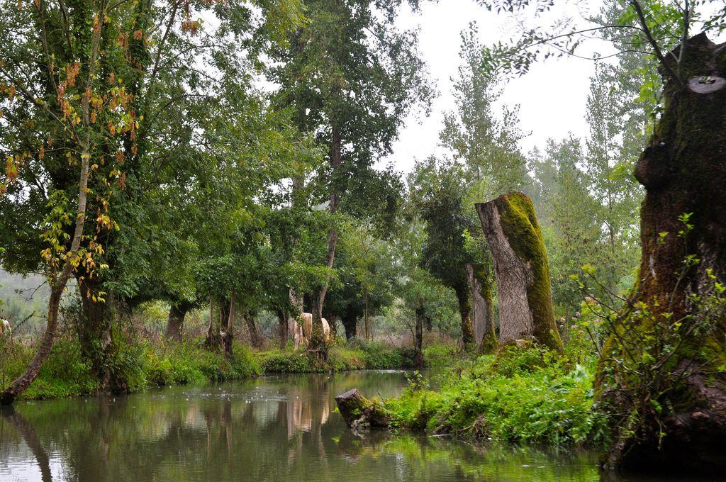 "Marais Poitevin - France's ""green Venice"""