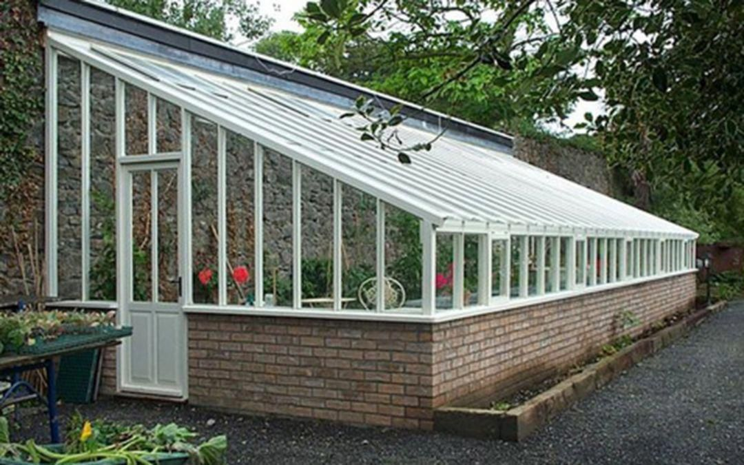 Home Greenhouse Ideas Greenhouse Growing Vegetables In A