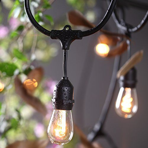 Outdoor Lights String Globe Amlight outdoor commercial heavy duty weatherproof string globe amazon amlight outdoor commercial string lights ul listed 48 feet 24 hanging sockets perfect patio garden or party bulbs not included patio workwithnaturefo