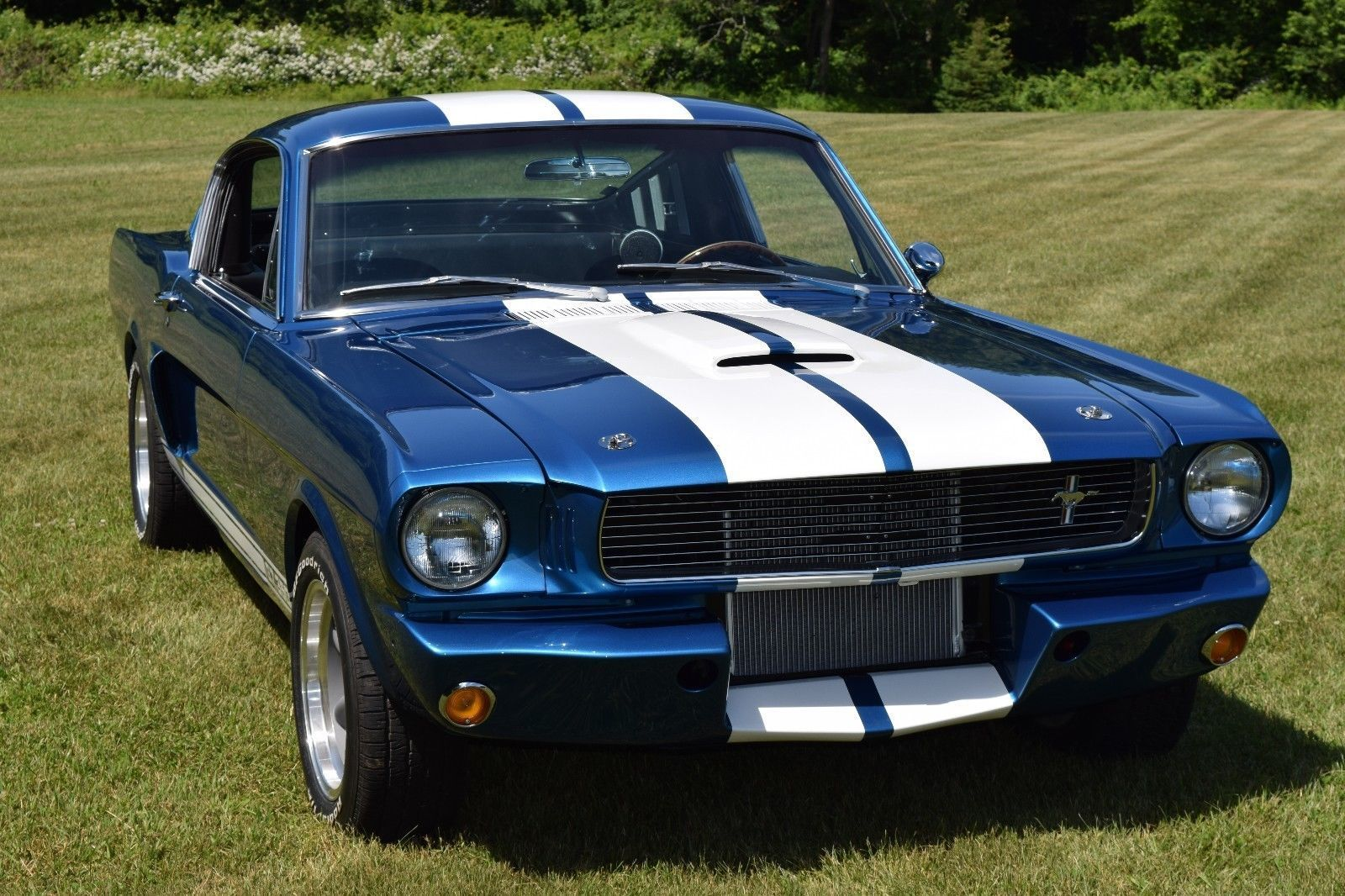 Ebay 1966 Ford Mustang 1966 Ford Mustang Fastback Gt350 Fordmustang Ford 1966 Ford Mustang Ford Mustang Classic Cars Muscle