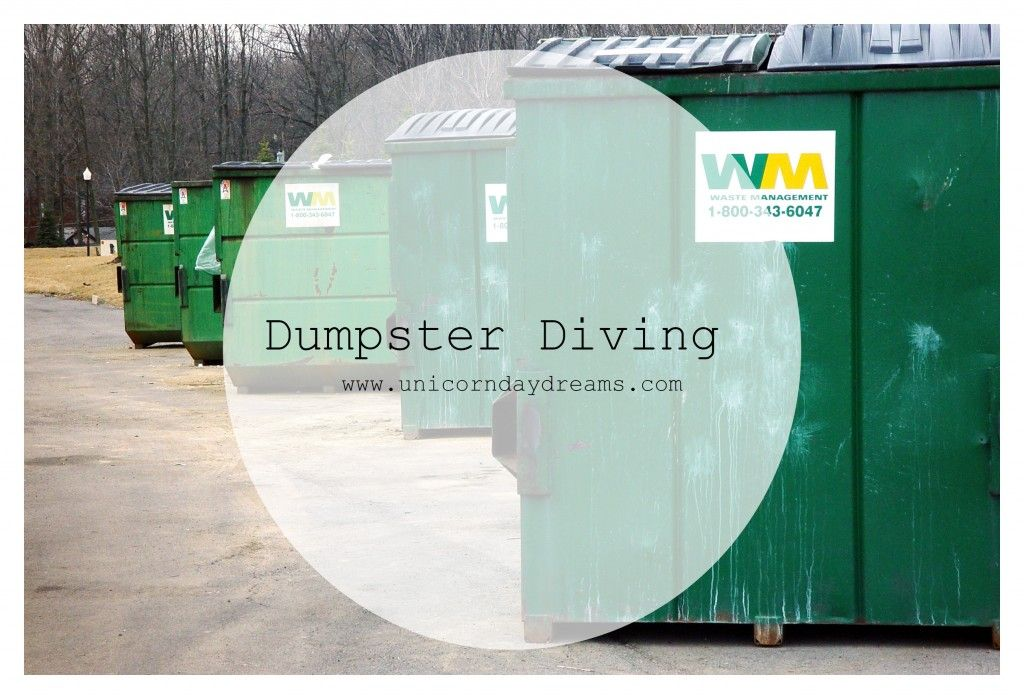 Dumpster Diving - Unicorn Day Dreams