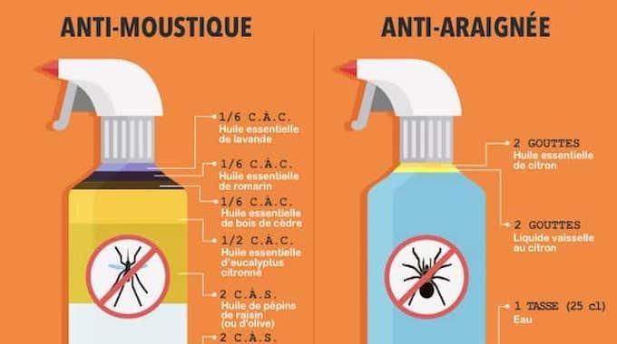 7 r pulsifs naturels contre les insectes l 39 efficacit redoutable astuces - Desodorisant naturel pour maison ...