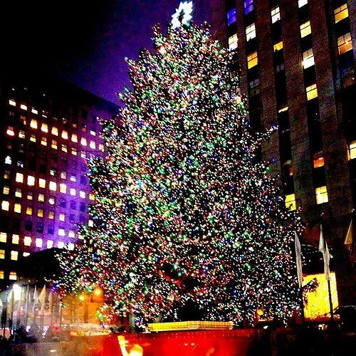 The 2015 Rockefeller Christmas Tree Lighting 2015: Kicking Off the Holiday  Season Brightly in NYC - Pin By Long Island On Parenting Tree Lighting, Christmas, Holiday