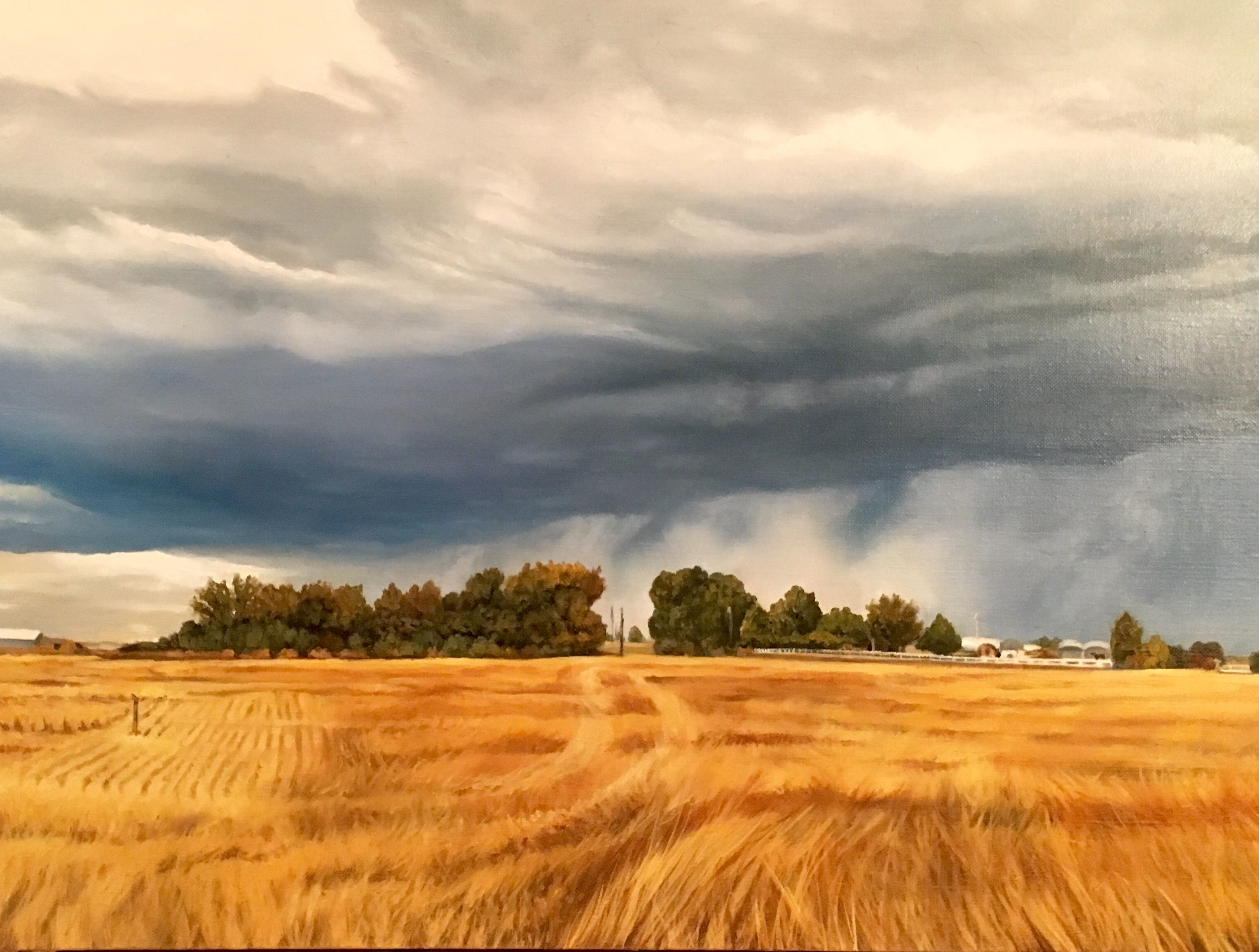 Idaho Farm painting. Wheat field with stormy clouds. | ART ... for Wheat Farm Painting  555kxo