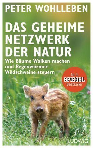 Gebundenes Buch »Das geheime Netzwerk der Natur« in 2020