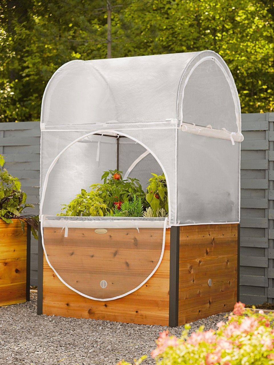 4X4 Elevated Garden Greenhouse, $399.00   Vegetable garden ...