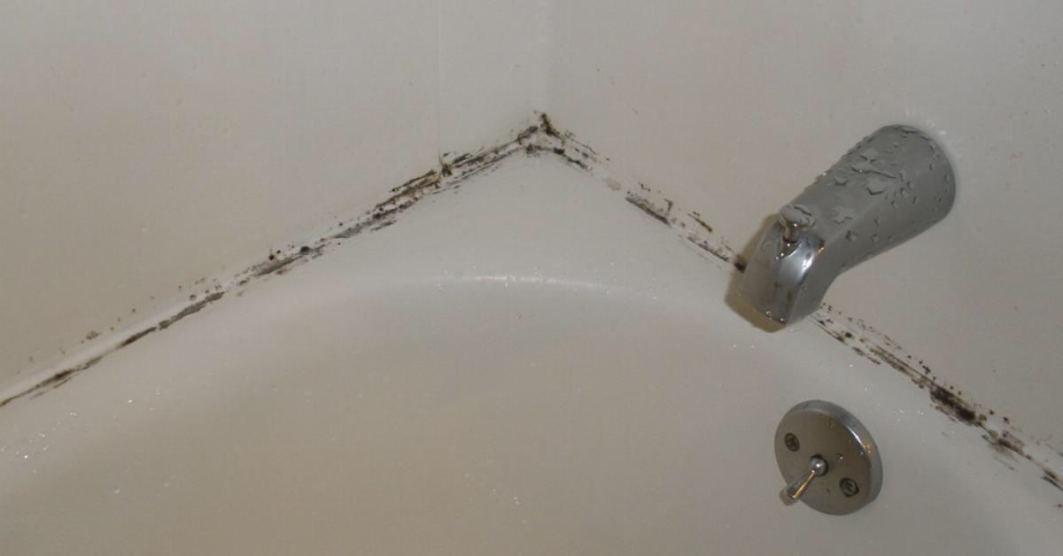 , このライフハックでお風呂の頑固なカビをキレイにできる!, MySummer Combin Blog, MySummer Combin Blog