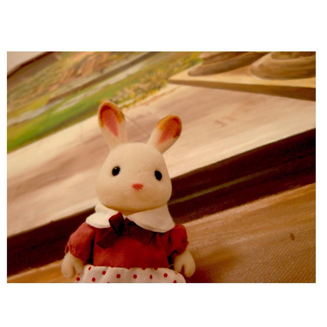 """#SylvanianFamilies #Ternurines #Sylvanian #conejo #bunny #kAwAii #cute #animal #instafollowforfollow #instafollow4follow #instafollowback #instakawaii…"""