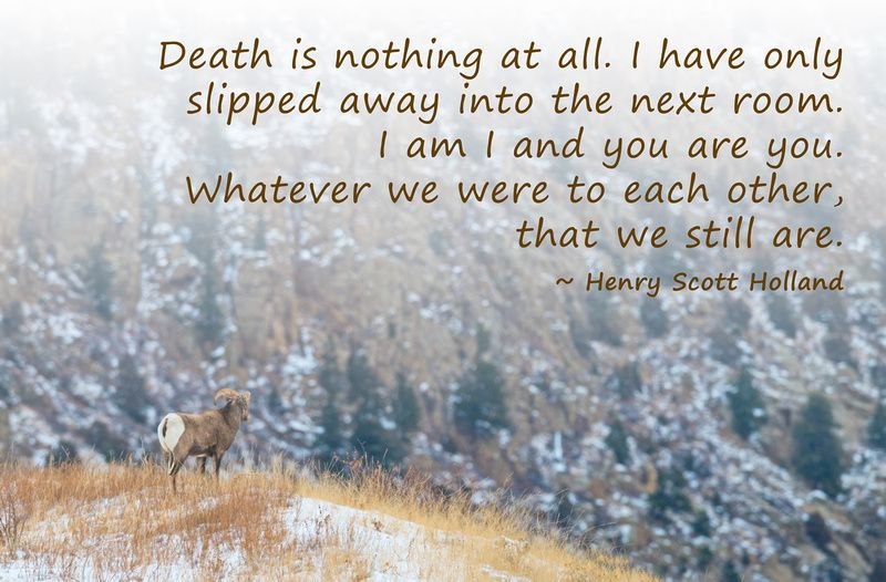 Inspirational Quotes About Death Pleasing Dawn Wilson Photography  Inspirational Quotes  Death Is Nothing At . Review