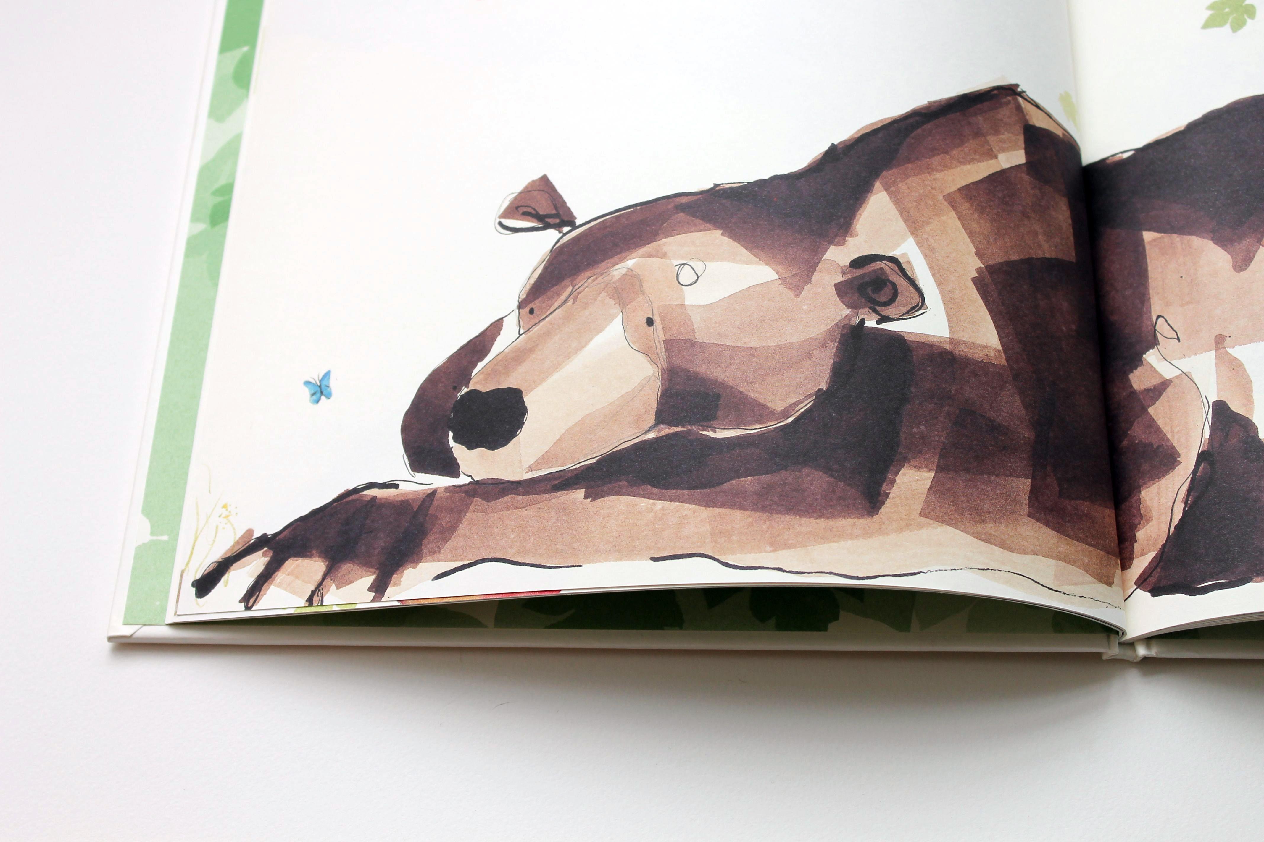 Catherine Rayner Award Winning Illustrator And Childrens