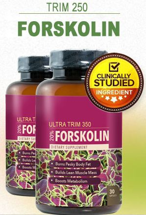 Ultratrim350 Is A Pure 100 Forskolin Extract Produced Supplement