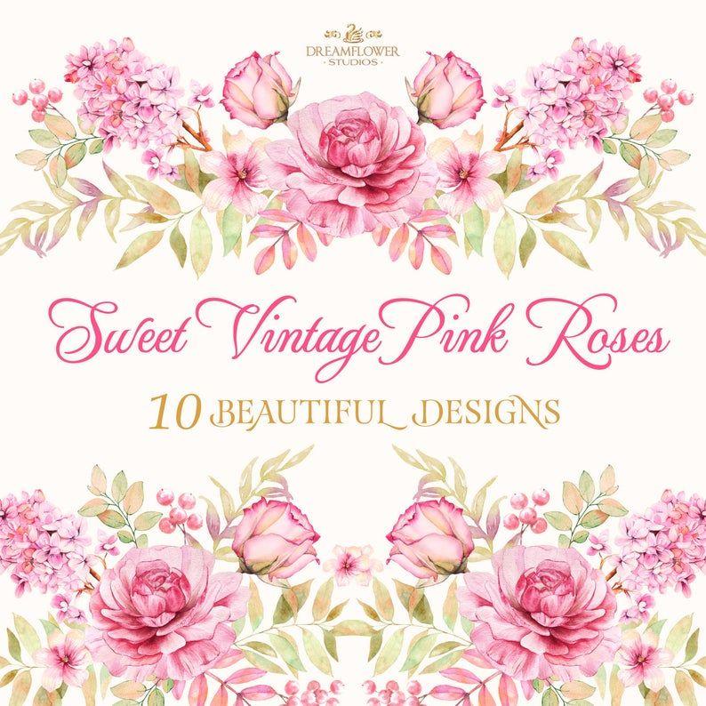 Pink Blush Watercolor Flowers Roses Png 79941 Illustrations Design Bundles Watercolor Flowers Watercolor Rose Watercolor Peonies