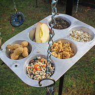 muffin tin feeder