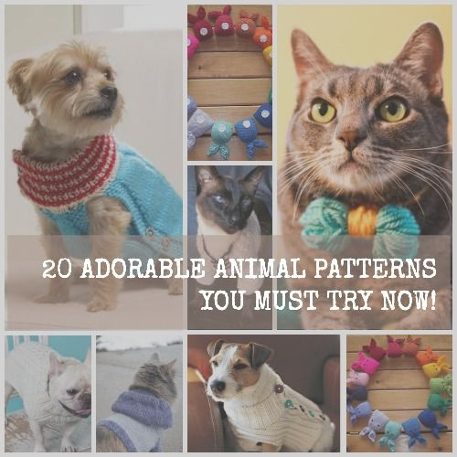 How to Knit a Dog Sweater + 10 More Adorable Animal Patterns | Mascotas