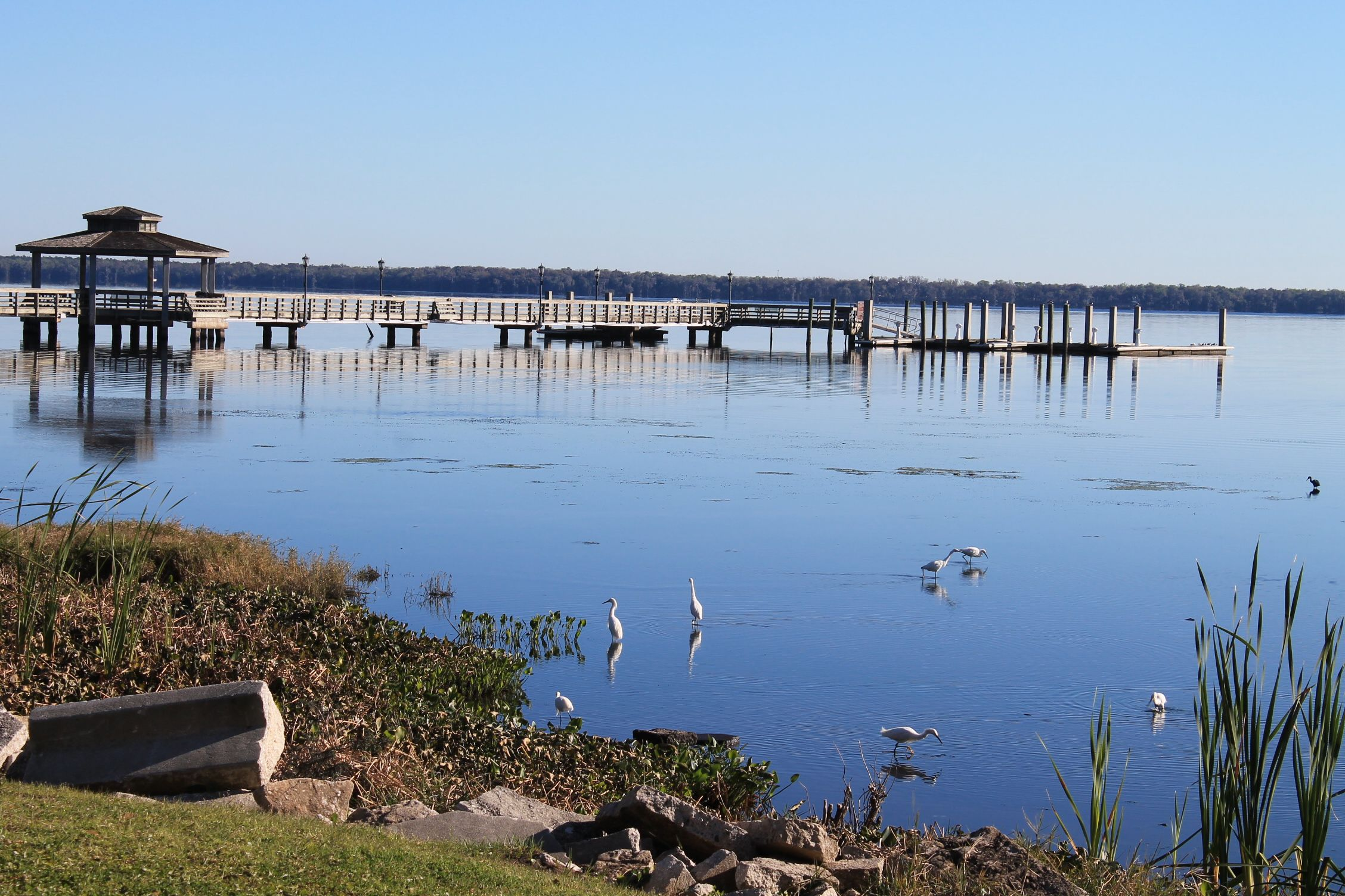 The City Pier Green cove springs, Outdoor, Cove