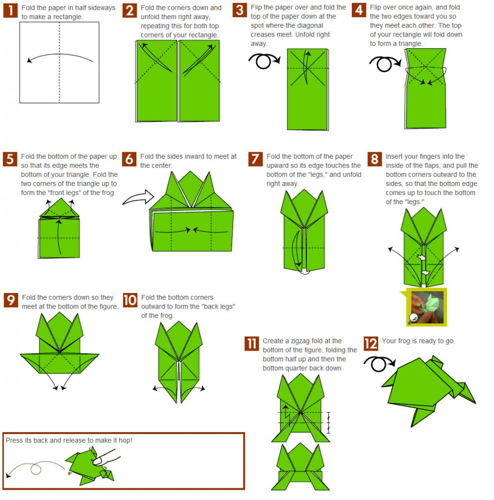 Step By Step Instructions How To Make Origami A Jumping Frog ... | 1024x1011