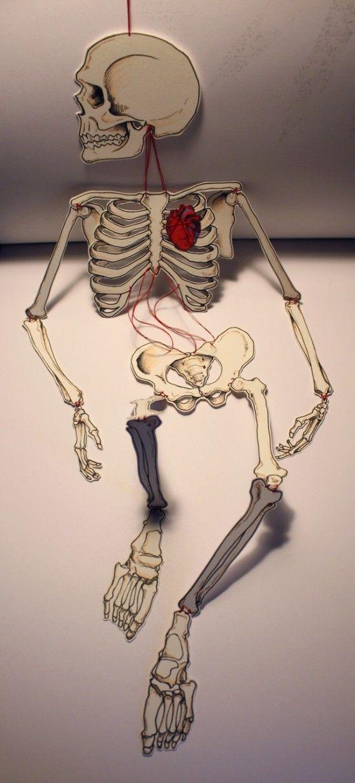 The Artist's Gift | Street Anatomy | Paper dolls, Skeleton ...