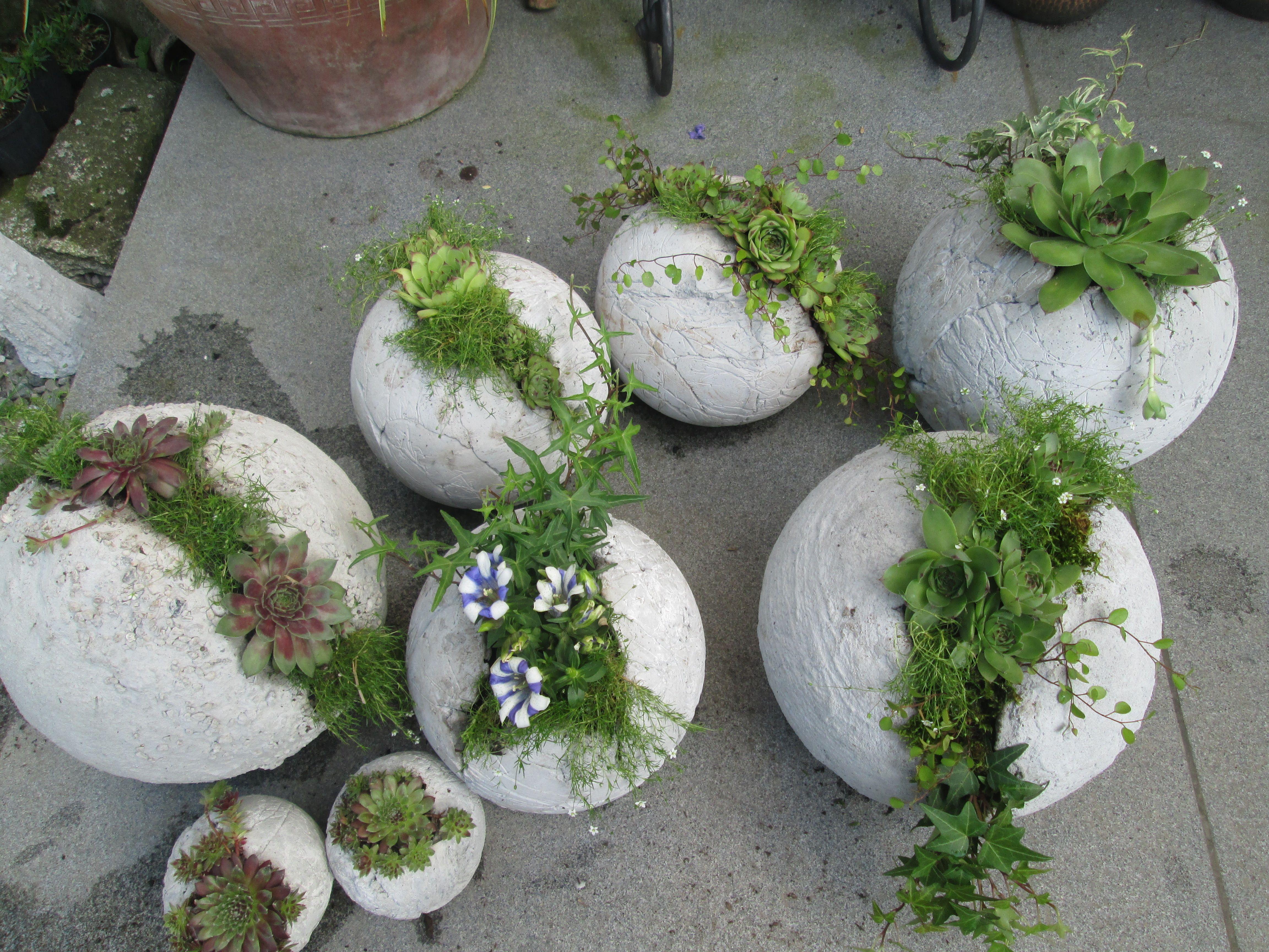geschenke aus beton google search garden pinterest geschenke mitbringsel und betonkugeln. Black Bedroom Furniture Sets. Home Design Ideas
