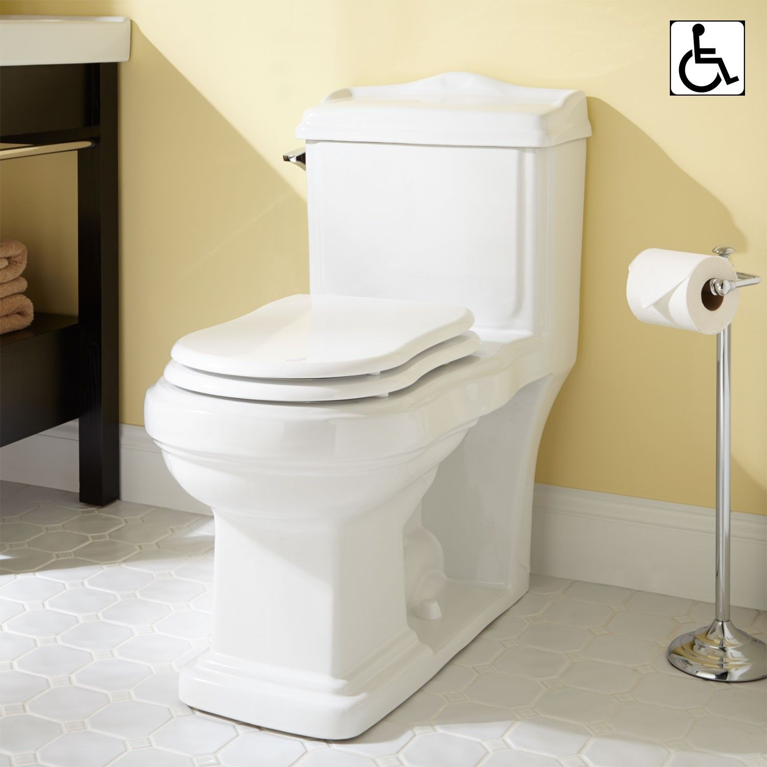 Scot Siphonic One Piece Elongated Toilet Ada Compliant Toilets