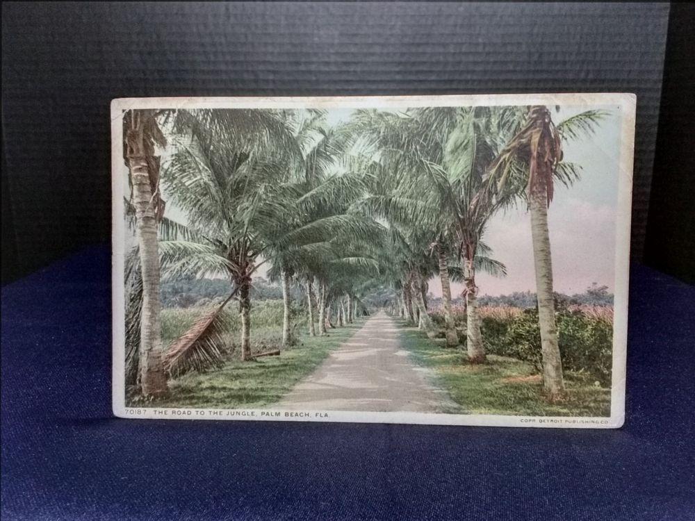 Post Card Road To The Jungle, Palm Beach, Fl., Detroit Pub. 11/24 1913 Stamp