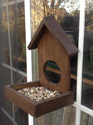 Build A Window Birdfeeder Bird House Feeder Bird Feeders Bird