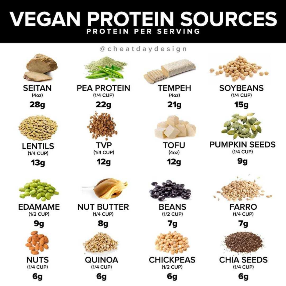 Pin by Laura tanner on recipes in 2020 Vegan protein