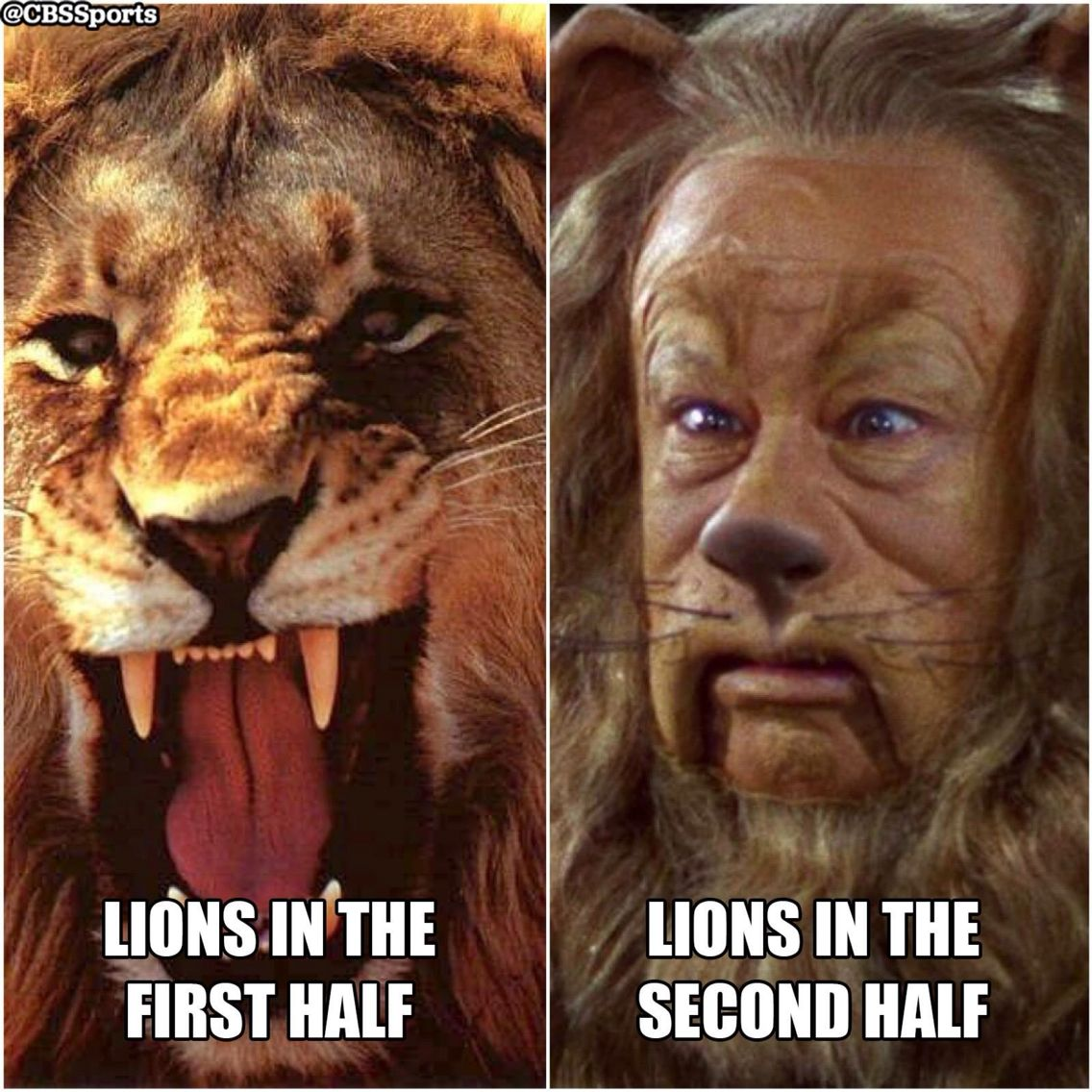 Pin By Janet Foster On Tailgate El Football 3 Lions Lion Nfl Memes