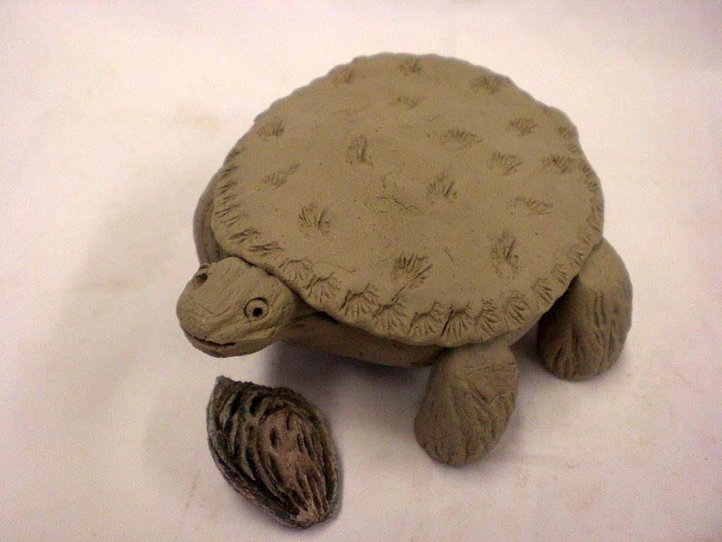 clay projects with kids | ... place right under it s shell ...