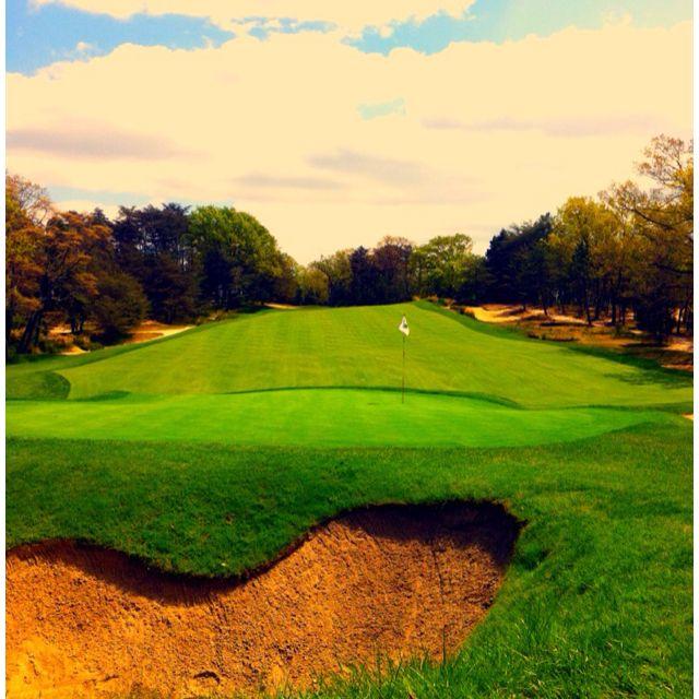 Pine Valley, NJ | Golf courses, Crazy life, Pine valley