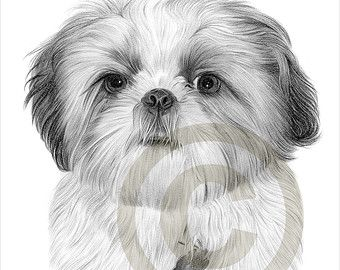Popular items for dog artwork print on Etsy