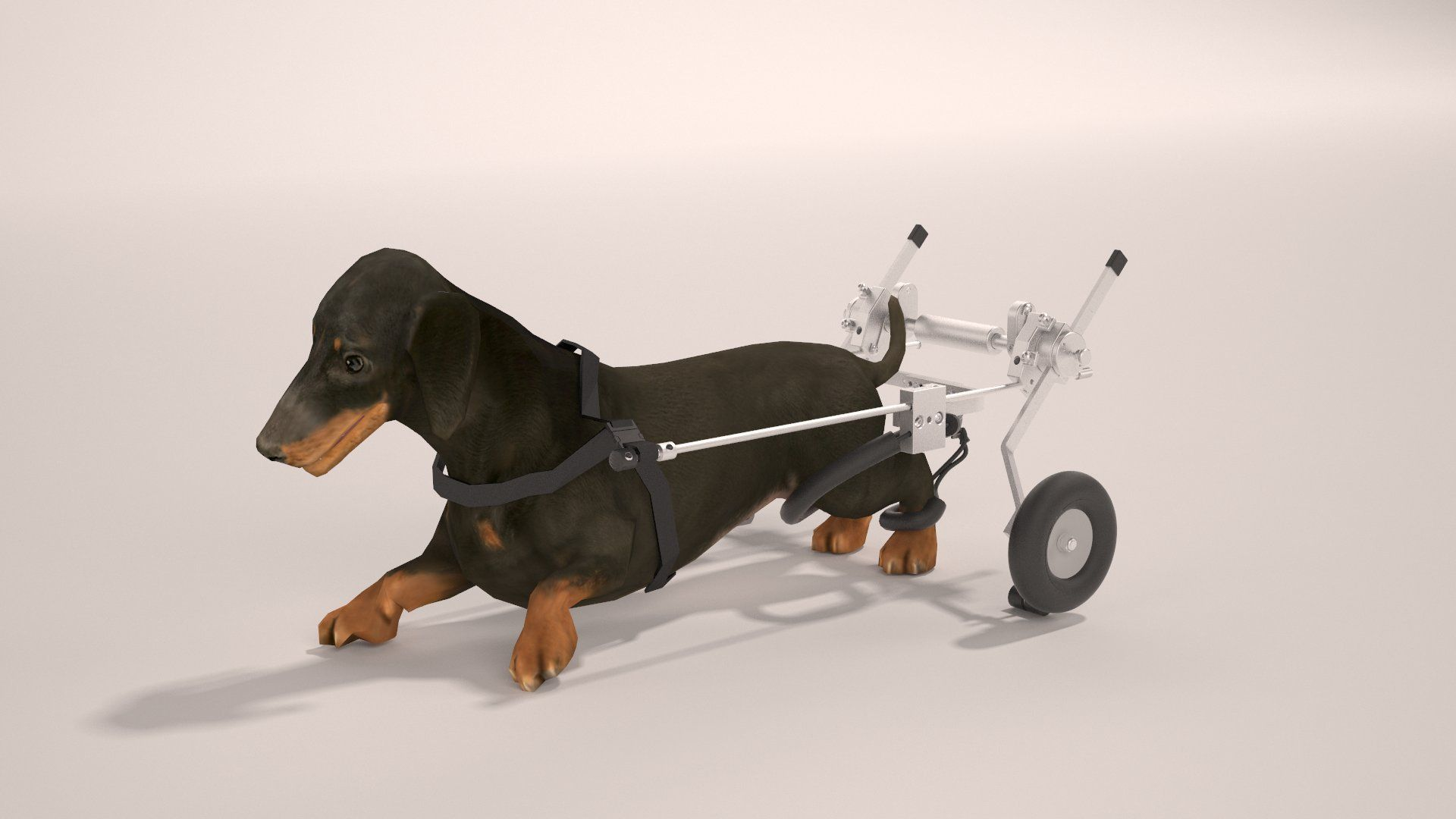Best Friend Mobility Sitgo Dog Pet Wheelchair Revolution M For More Information Visit Image Link Dogscarriersandtravelproducts Pet Dogs Dog Carrier Pets