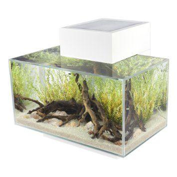 Fluval Edge 6 Gallon Aquarium With 21 Led Light White Nano Aquarium Aquarium Set Fish Tank
