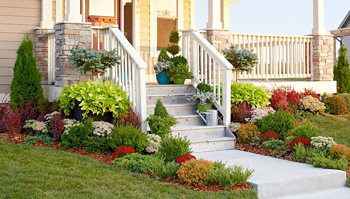 landscaping ideas evergreen garden