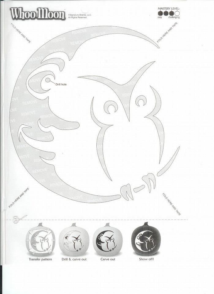 whoomoon carving pattern k rbisschnitzen k rbisse. Black Bedroom Furniture Sets. Home Design Ideas