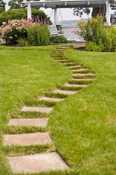 What Grass Seed Will Grow In Dirt Sand Mixture Centipede Grass Sloped Garden Garden Paths
