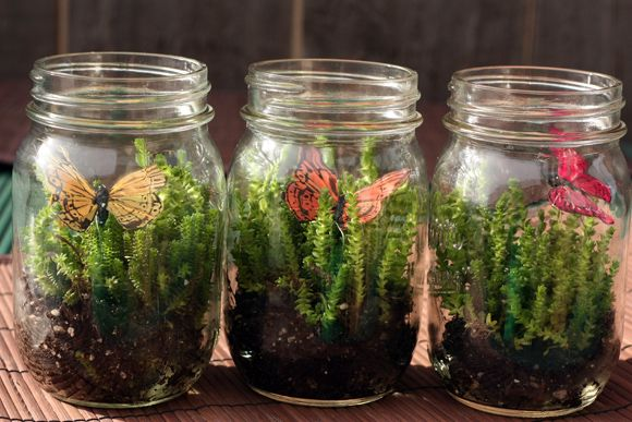 Oh my cutest little mason jars from a woodland themed