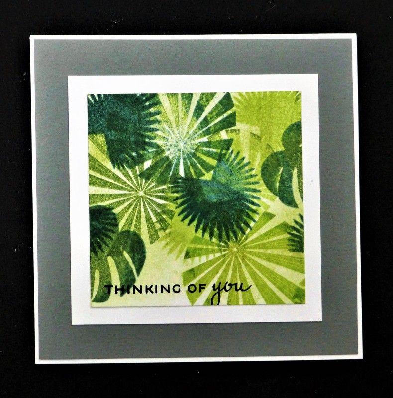 WT620  Rainforest
