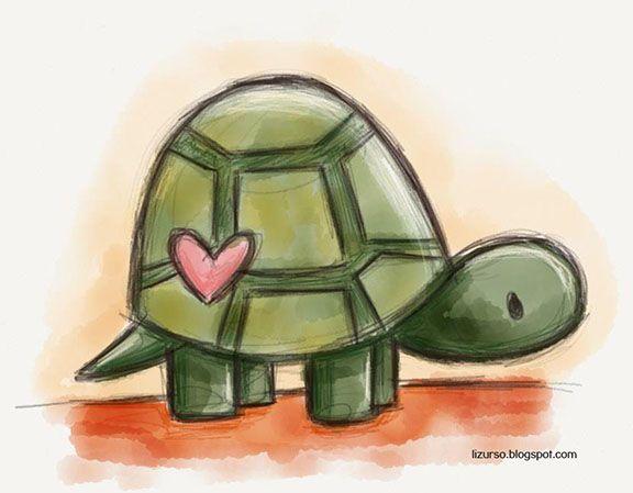 tortoise drawing for pinterest - photo #20