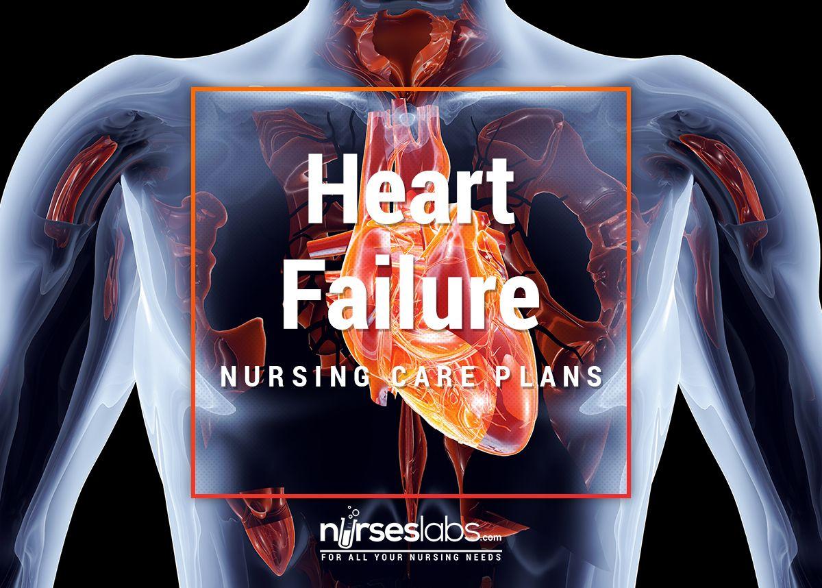 Heart Failure Nursing Care Plans: 15 Nursing Diagnosis ...