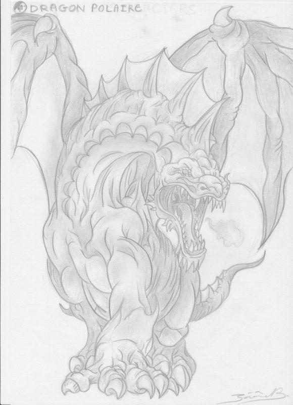 dragon polaire