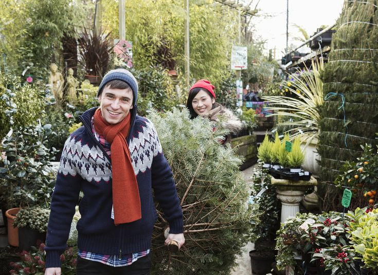 How to Keep Your Tree Fresh All Winter With a Homemade ...