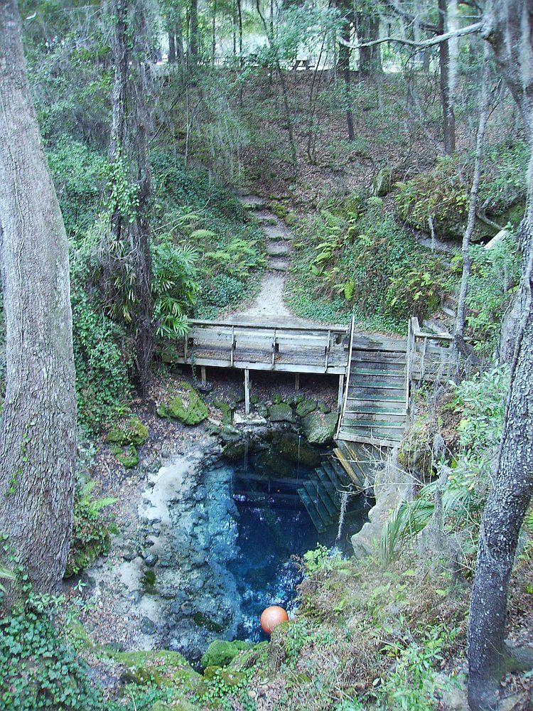 Paradise Spring, 54 min drive from Alexander Spring  | Annual Spring