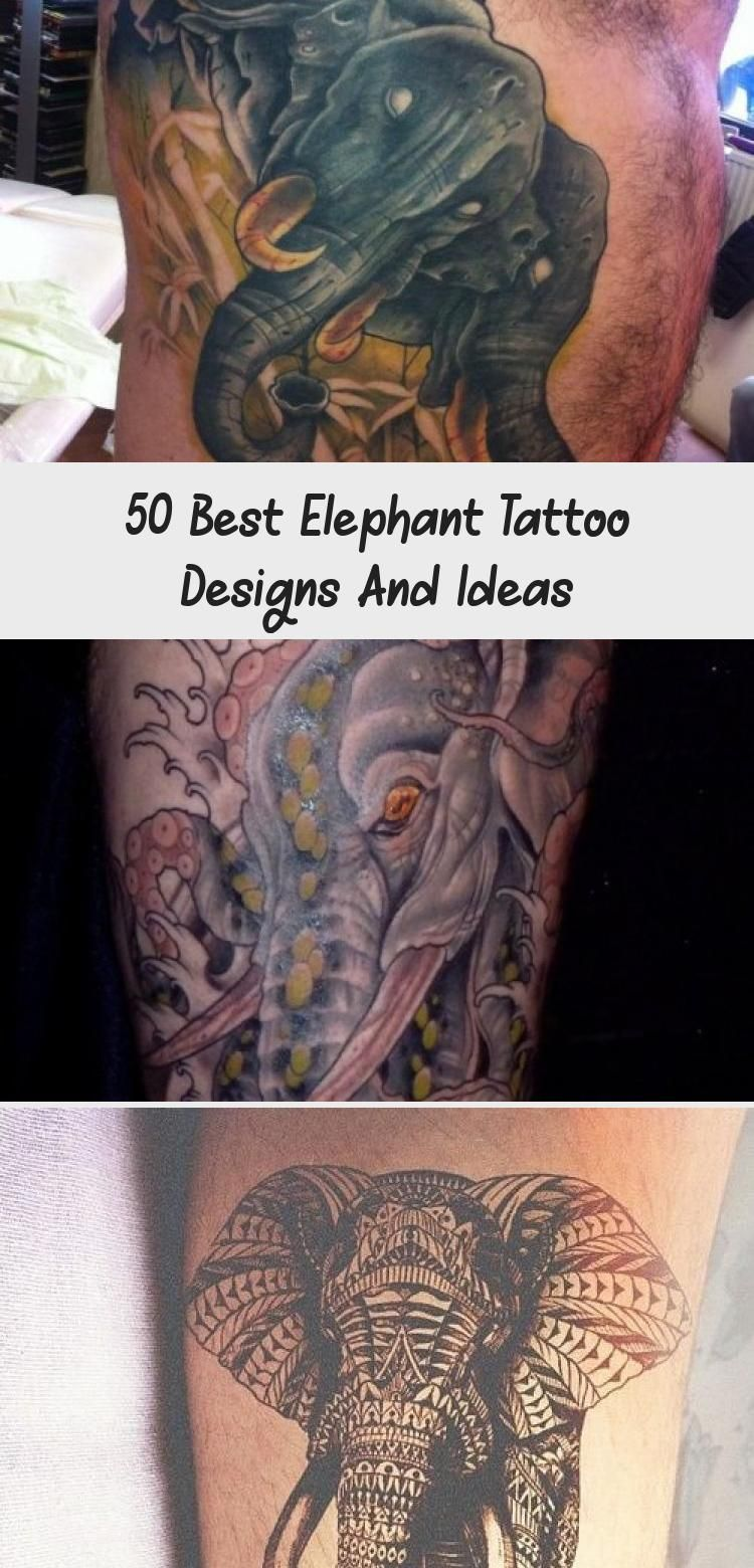 50 best elephant tattoo designs and Ideas
