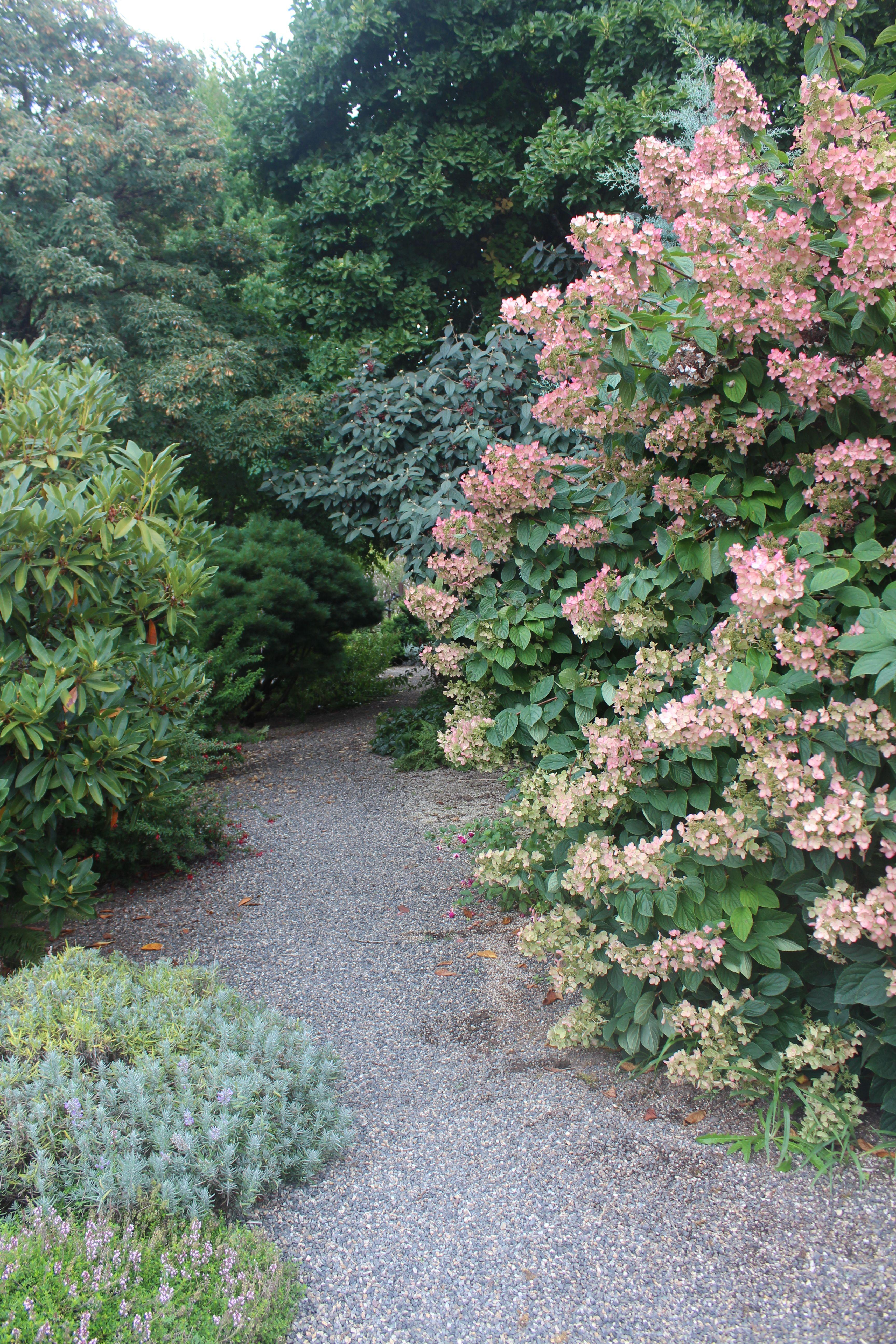 Short List Of Useful Tips For A Newbie Gardener