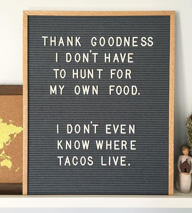 Thank Goodness I Donu0027t Have To Hunt For My Own Food. I Donu0027t Even Know  Where Tacos Live.
