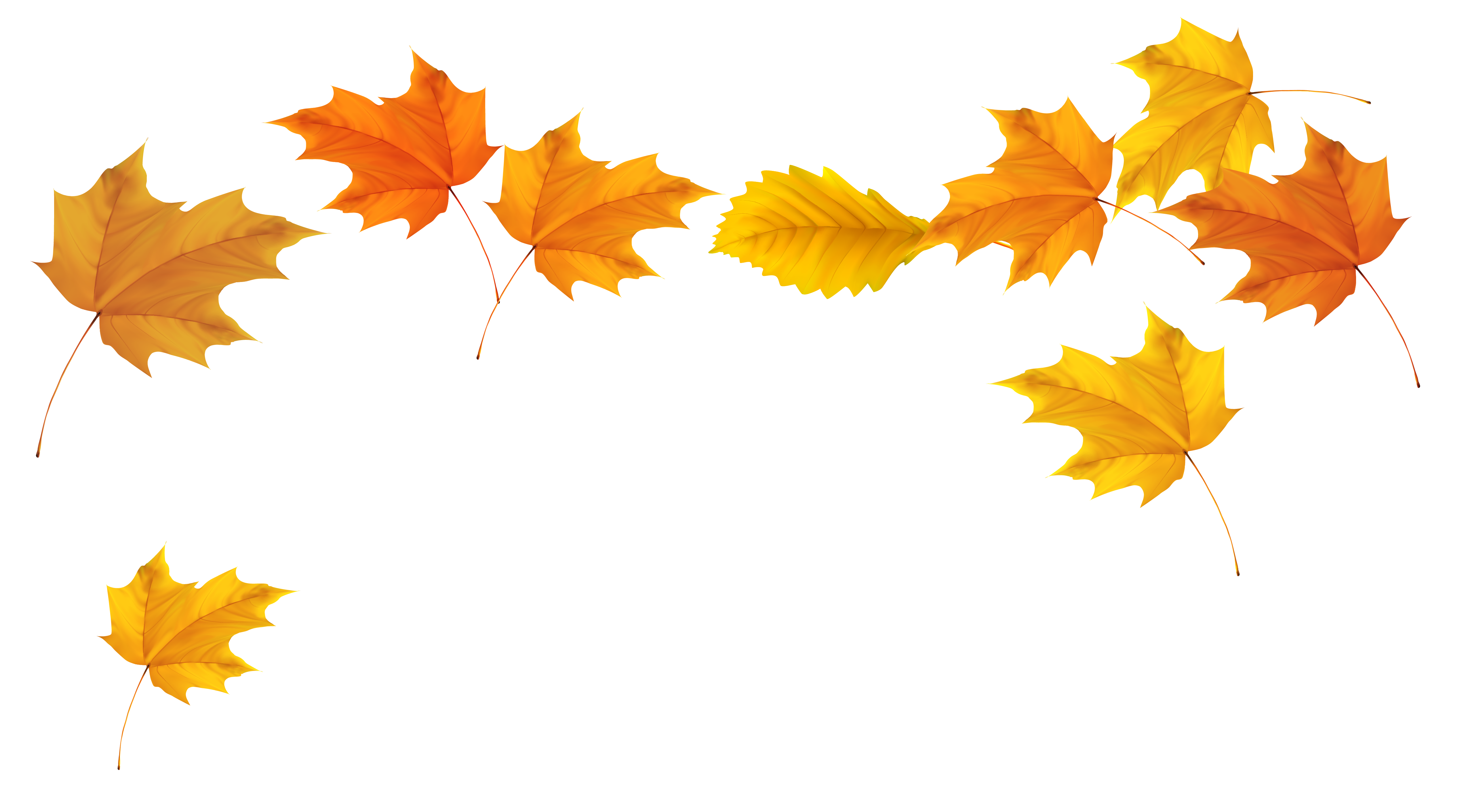 Blowing Leaves Fall Leaves Pictures Autumn Leaves Leaf Silhouette