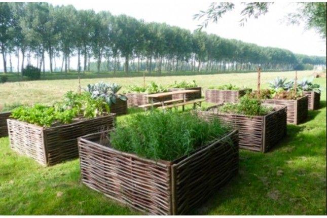 Bordures Panier en noisetier sur mesure | Garden - Jardin ...